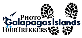 Trekkers logo Galapagos.jpg
