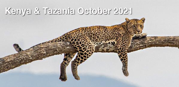 KenyaTanzania1021Level3.jpg