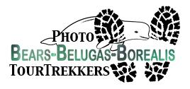 Trekkers logo BearsBelugasBorealis.jpg
