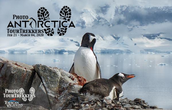 AntarcticaBlogS.jpg