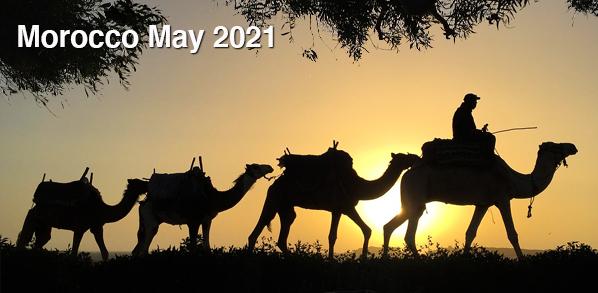 Morocco0521Level3.jpg