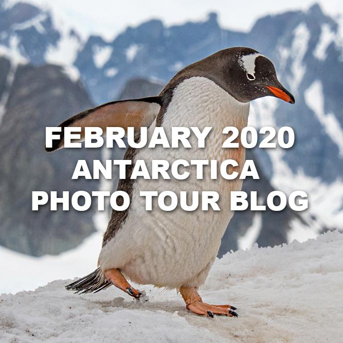 BlogAntarctica.jpg