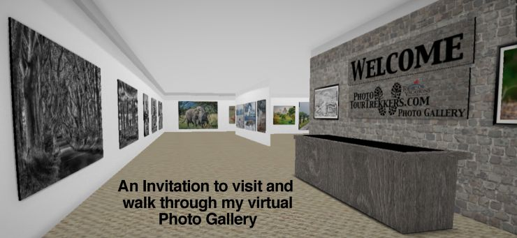 Virtual Gallery Invite.jpg
